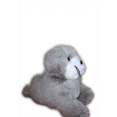 Тюлень #50