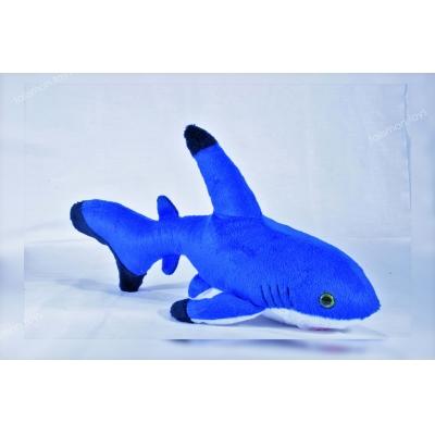 Акула Риша #12