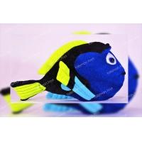 Рыбка-дори #35