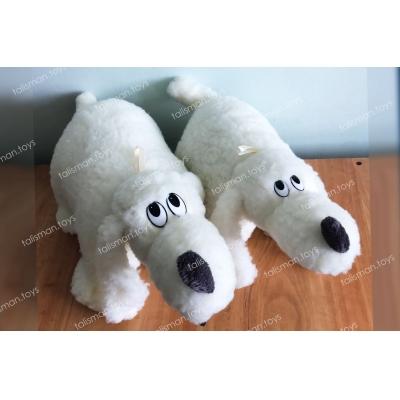 белые собачки
