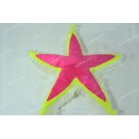 Морская звезда #25