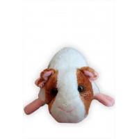 Морская свинка #48